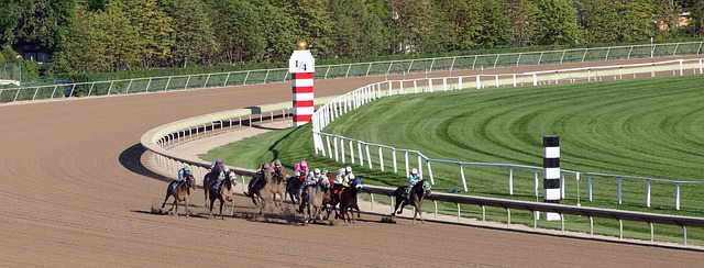 Hästsports betting